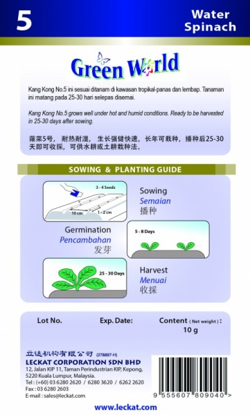 GW005 Water Spinach2