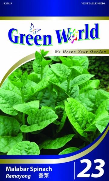 GW023 Malabar Spinach1