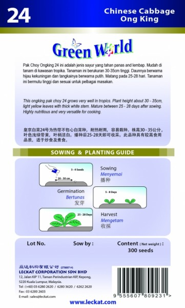 GW024 Chinese Cabbage - Ong King2